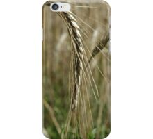 Barley Wheat iPhone Case/Skin