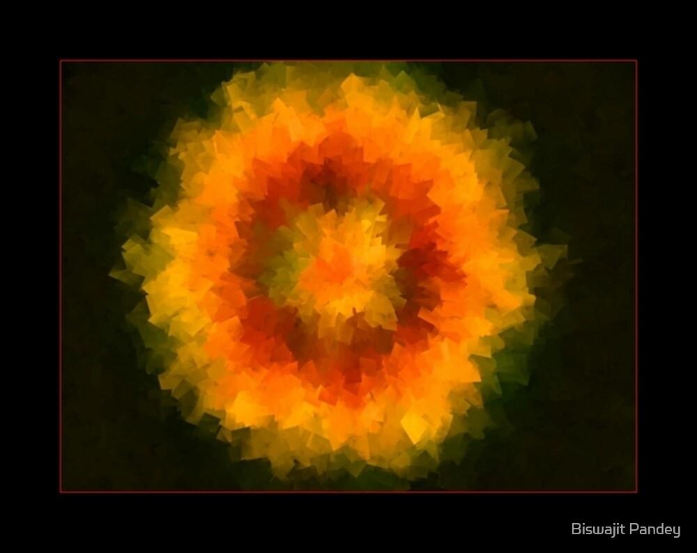 ...Bloom... by Biswajit Pandey