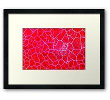 Red Dragon Vein Agate Pattern Framed Print