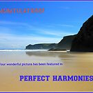 Perfect Harmonies - New Banner by kathrynsgallery
