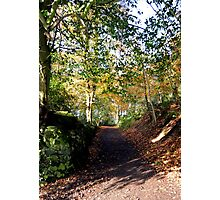 Killynether in the Autumn Sun....4 Photographic Print
