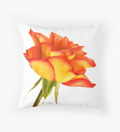 Autumn Splendor Rose Throw Pillow