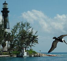 Pelcan Lighthouse by Burt
