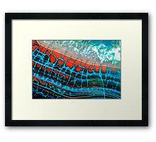 Blue Red Dragon Vein Agate Pattern Framed Print