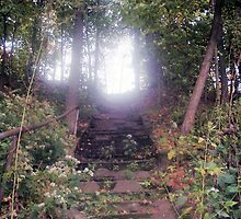 Heaven's Stairway by Mikkar83
