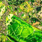 Green Sea Sediment Agate Pattern by MMPhotographyUK
