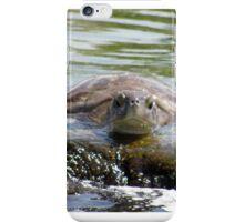 Turtle Landing iPhone Case/Skin