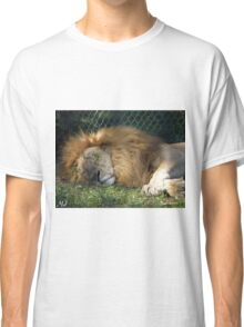 Sleeping Giant Classic T-Shirt