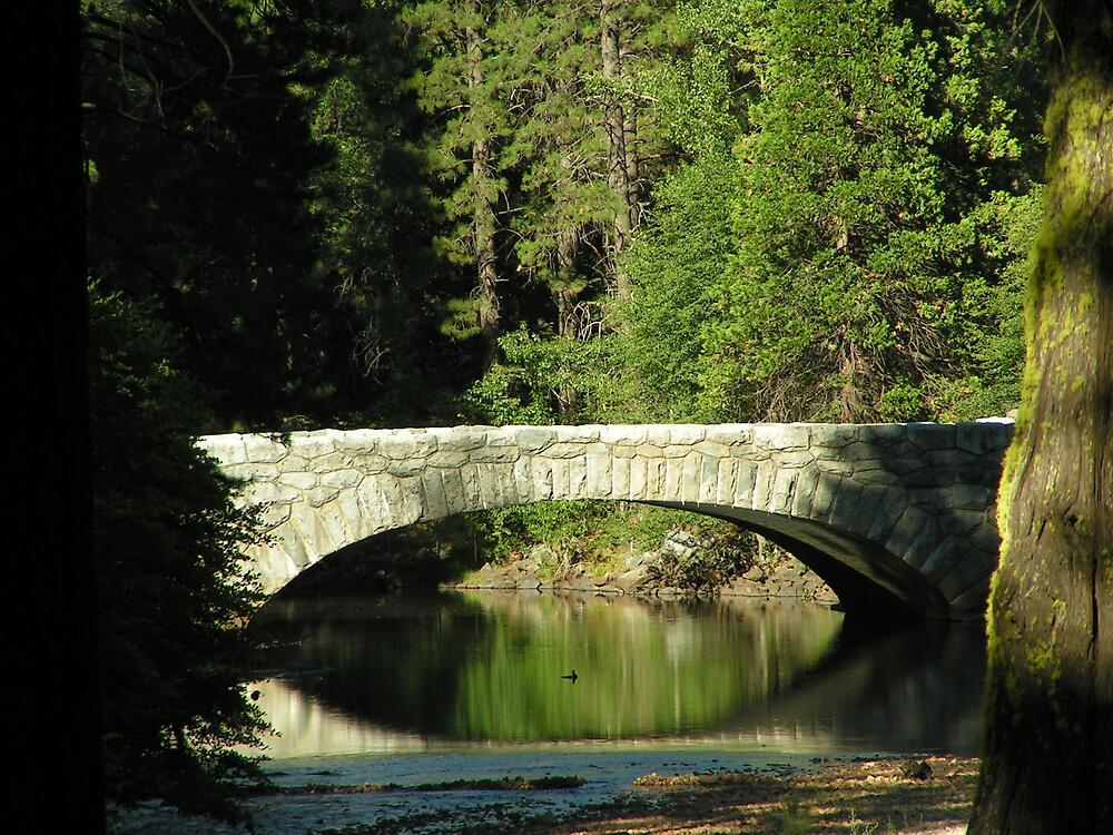 Duck Under the Bridge by kraftyest