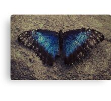 FacetFly Canvas Print