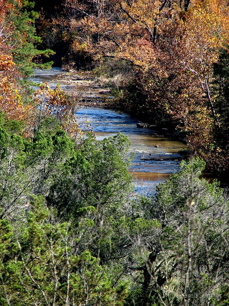 Creek in Fall by Brad Sumner