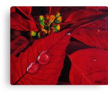 Big Red Poinsettia Canvas Print