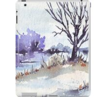 Winter at the pond iPad Case/Skin