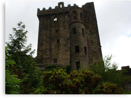 Blarney Castle by Reeshia1230