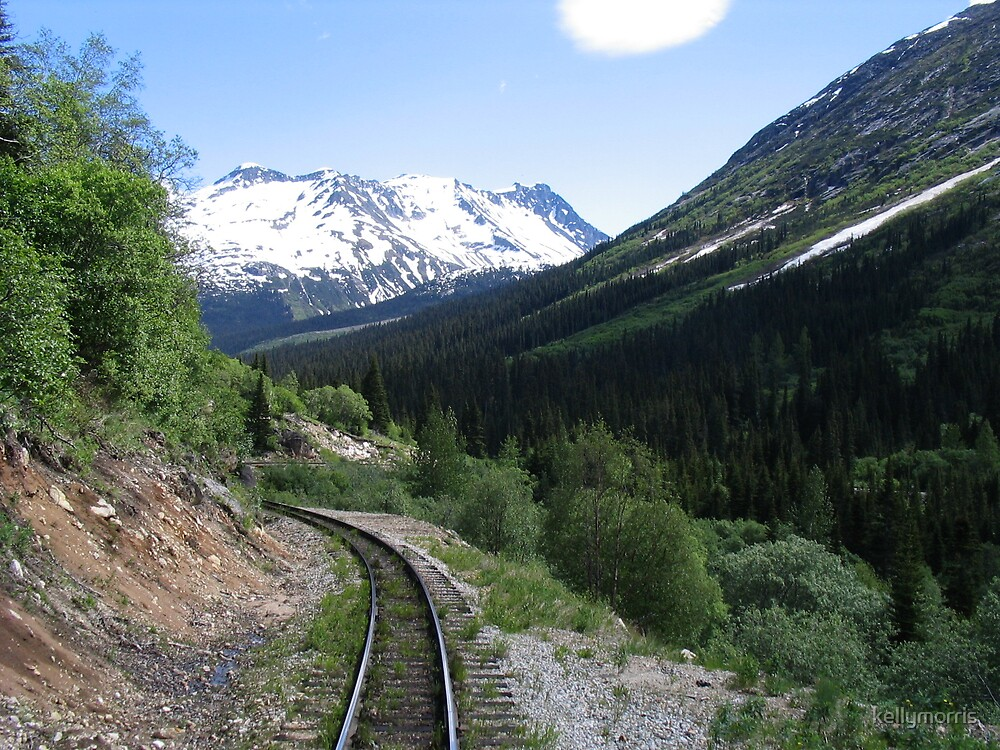 Skagway Train Tracks and Mountains by kellymorris