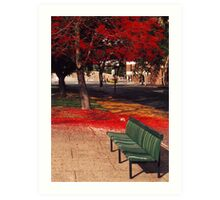 Bench and Backdrop Art Print