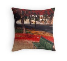 Bench and Backdrop Throw Pillow