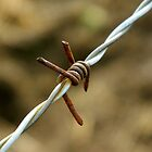 Sign of a metalhead..\m/..barbed wire looks like the sign for metal by jammingene