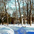 MacDonald Park, Ottawa, ON Canada by Shulie1
