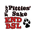 End BSL1 by Lydia Marano