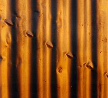 Texture 1 by Erica Corr