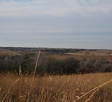 Our Land in Winter 3 by kellymorris