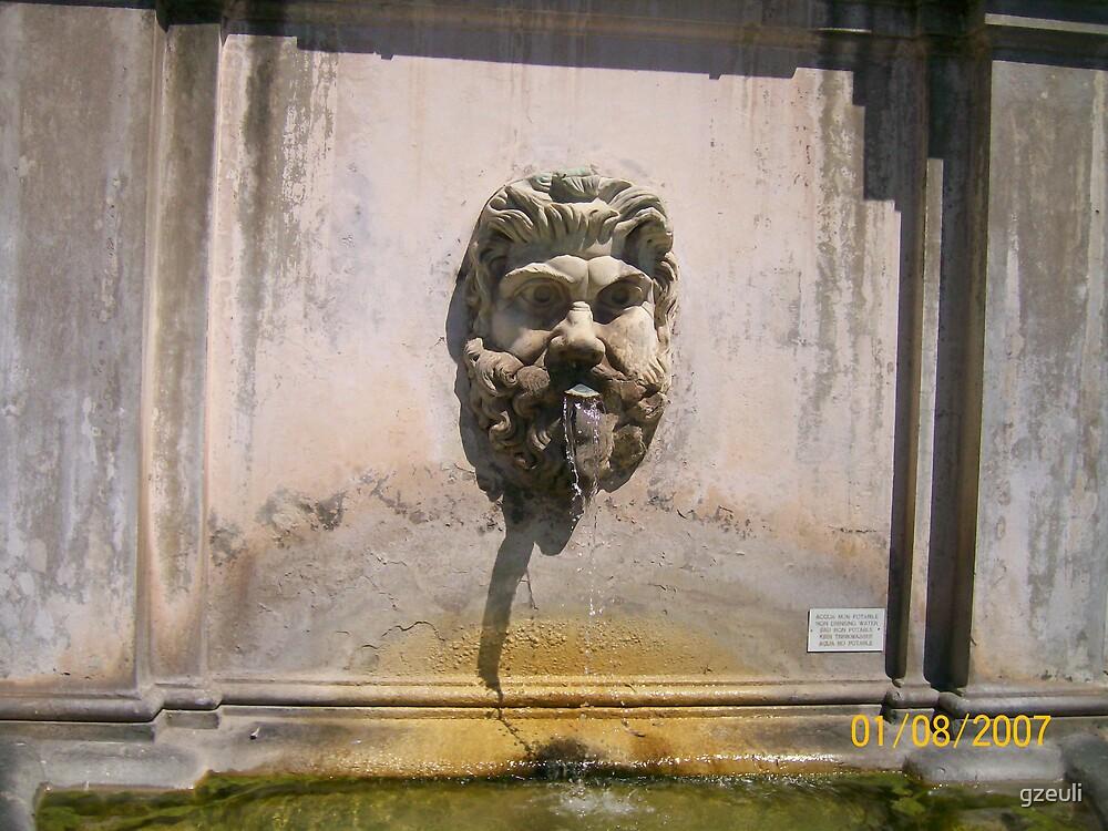 Vatican Fountain by gzeuli
