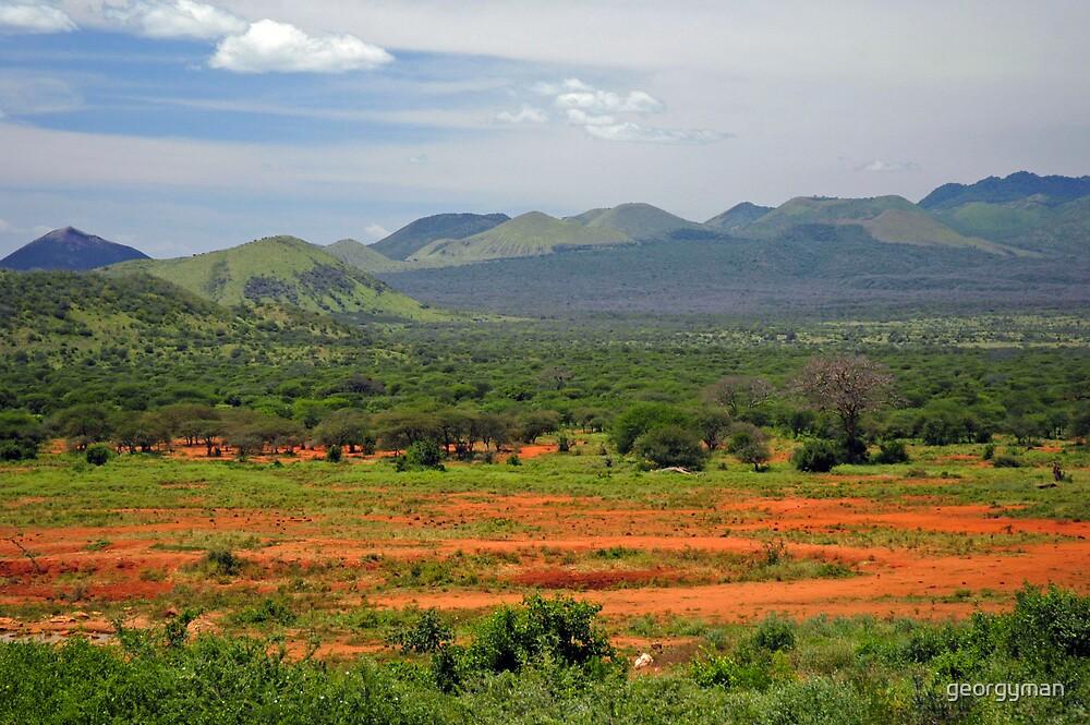 Kenyan Landscape by georgyman