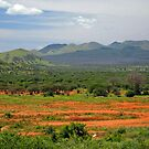 Kenyan Landscape by georgyman