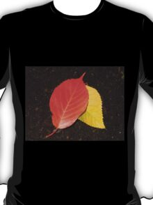Linden Leaves in the Lamplight T-Shirt