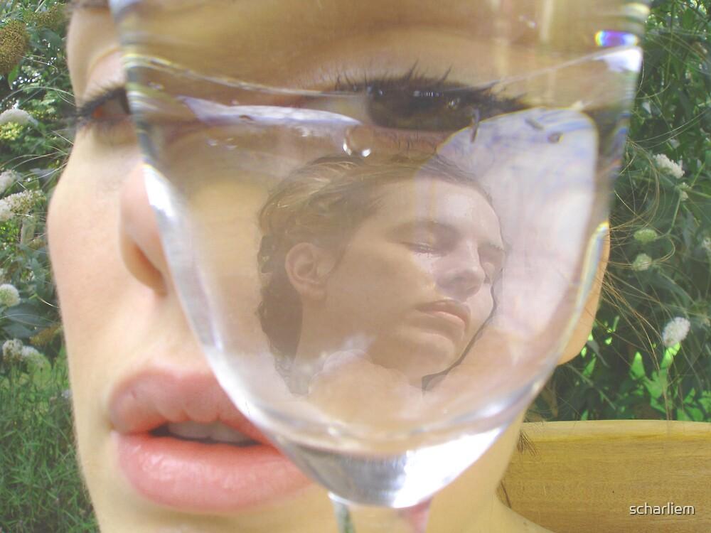the glass dream by scharliem