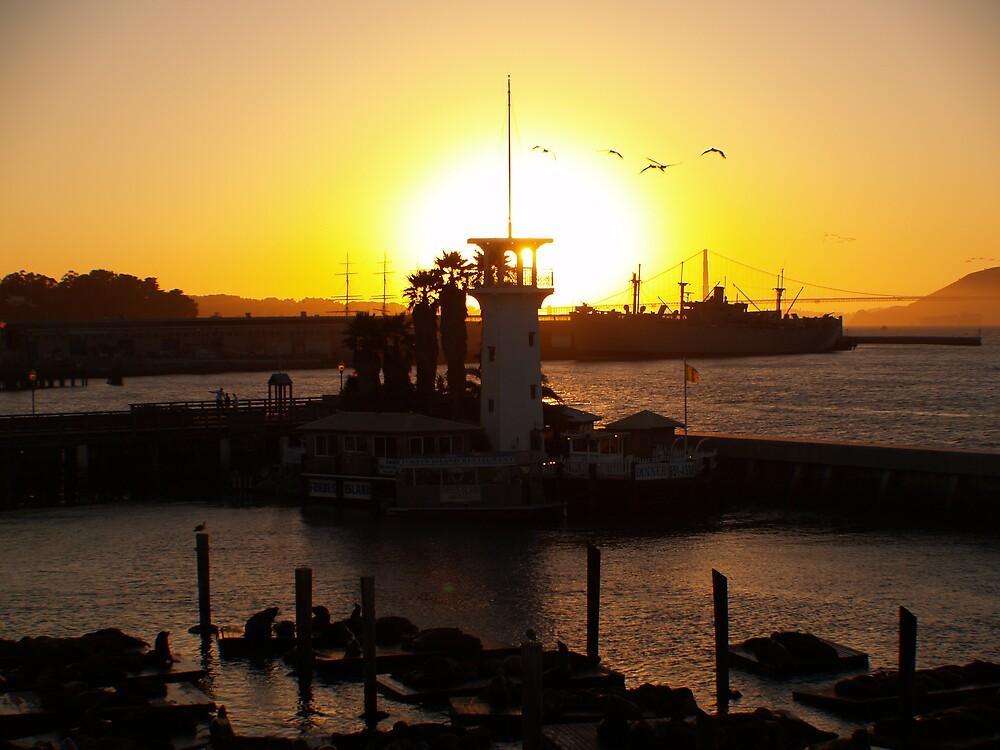 San Francisco at Sunset by kburkard1