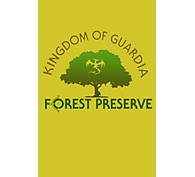 Guardia Forest Preserve Photographic Print
