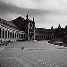 Plaza de España, Sevilla by Ozerk Kalender