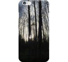 Cougar Mountain iPhone Case/Skin