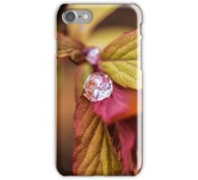 Corals and Drops iPhone Case/Skin