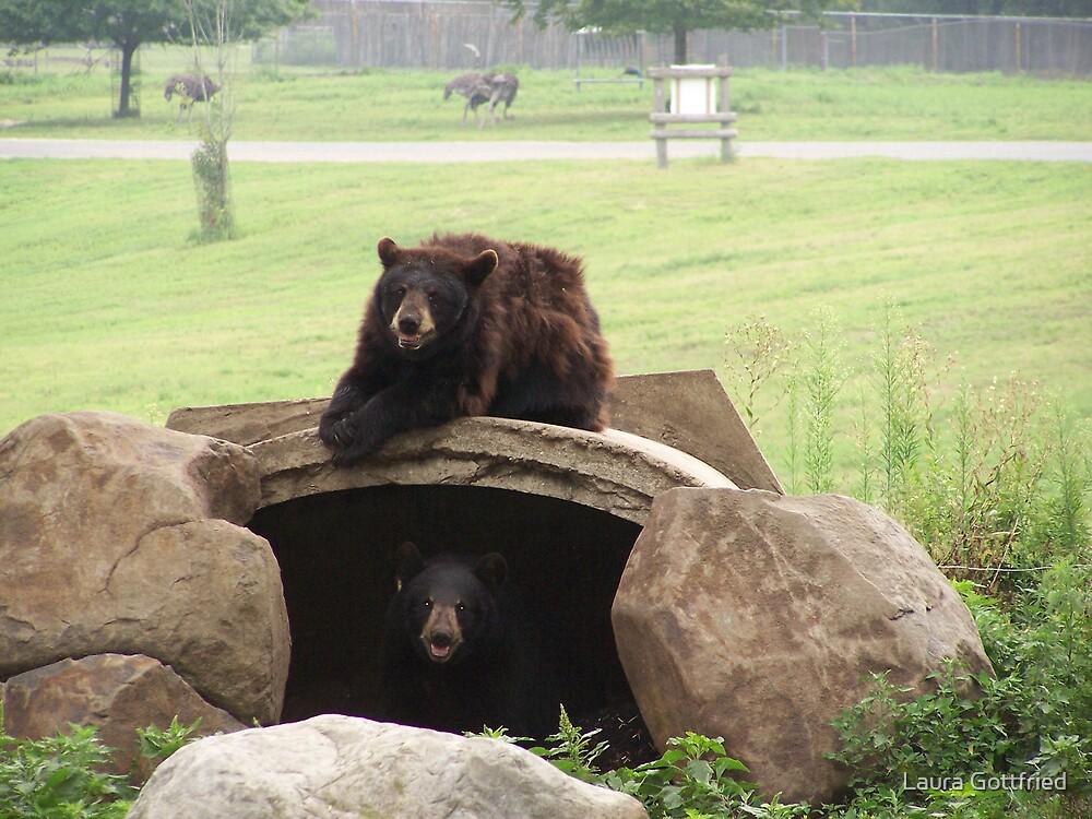 Happy Bears by Laura Gottfried