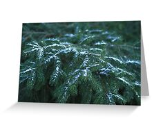 Snow On Tree Branches Greeting Card
