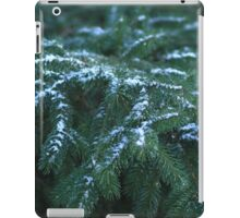 Snow On Tree Branches iPad Case/Skin