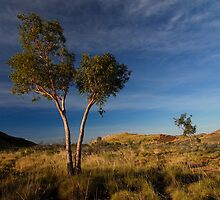Pilbara Evening by TheGratefulDad