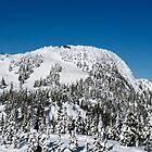 Top of Mt Washington by Charles Kosina