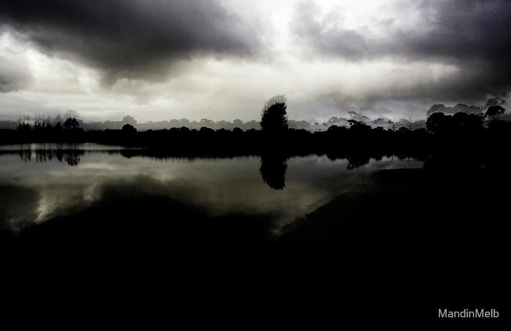 Dark Wetlands by MandinMelb