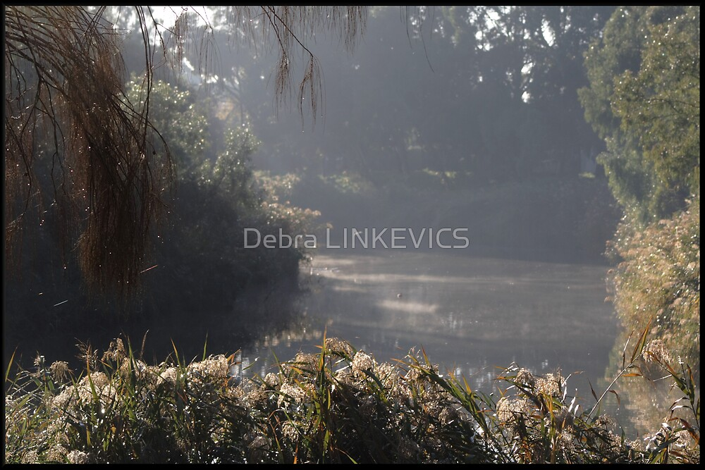 Peace and Solitude by Debra LINKEVICS