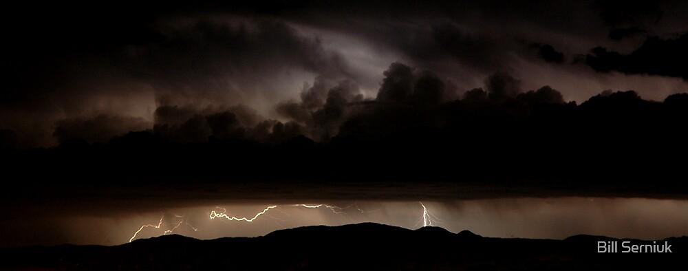 Stormy by Bill Serniuk