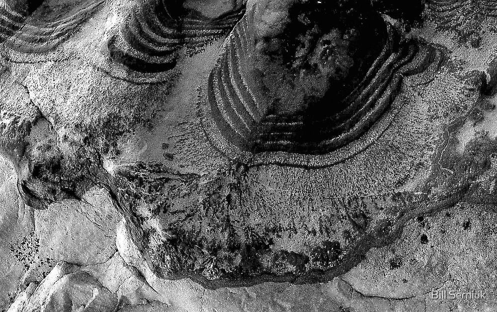 Stone by Bill Serniuk