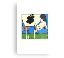Cow IV Metal Print