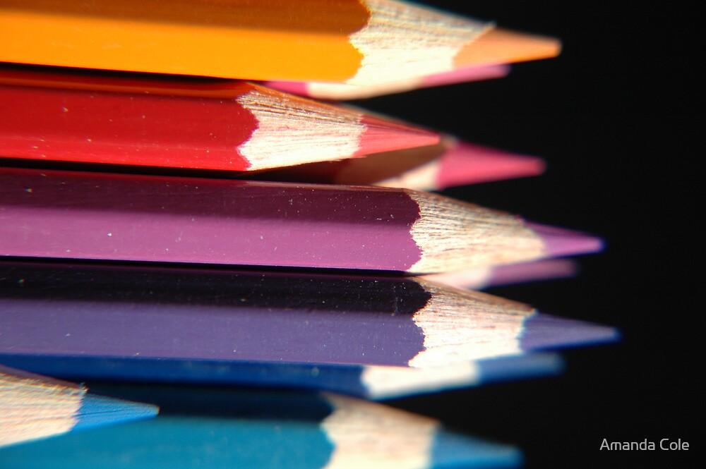 Pencils 2 by Amanda Cole
