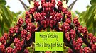 Have a Berry Good Birthday by KazM
