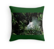 Displaying Egret Throw Pillow
