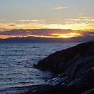 The Far West ............. by Larry Llewellyn